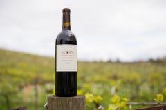 De Wijnmakerij Sonoma Californië van de eikelheuvel in de Lente stock foto's