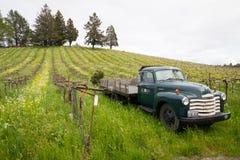 De Wijnmakerij Sonoma Californië van de eikelheuvel in de Lente royalty-vrije stock foto