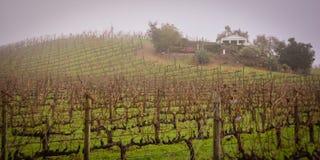 De Wijnmakerij van de Benzigerfamilie dichtbij Glen Ellen CA stock afbeeldingen