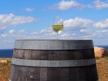 De Wijnmakerijen en de Wijngaarden van Long Island royalty-vrije stock foto's