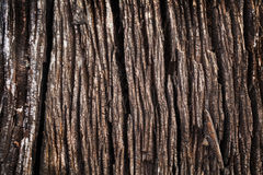 De wijnoogst doorstond houten textuur of achtergrond Royalty-vrije Stock Afbeelding