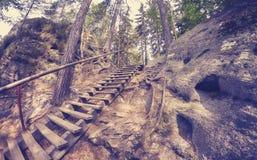 De wijnoogst stemde houten ladder in de rotsstad van Adrspach Teplice stock fotografie