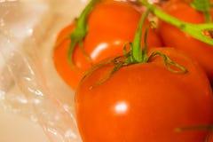 De wijnstok rijpte Rode Tomaten met Stammen stock foto's