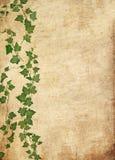 De wijnstokachtergrond van Grunge stock illustratie