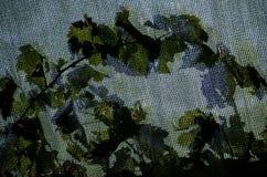 De wijnstokbladeren, stelt en schaduw in de schaduw Stock Afbeelding