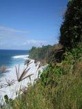 De wilde aard van de kust Stock Foto's