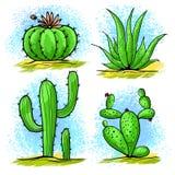 De wilde Cactus trekt stock illustratie