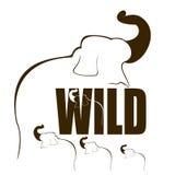 De wilde Illustratie van de Olifant. Stock Afbeeldingen