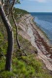 De wilde rotsachtige cosat oof Oostzee Saaremaa stock fotografie