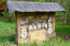 De wilde schuilplaats van het bijeninsect bij een weide Stock Foto