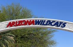 De Wilde stakingen van Arizona stock afbeeldingen