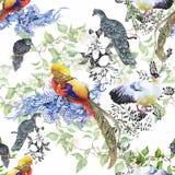 De wilde vogels van Fazantdieren in waterverf bloemen naadloos patroon Stock Foto