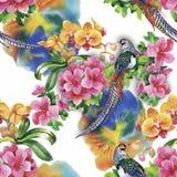 De wilde vogels van Fazantdieren in waterverf bloemen naadloos patroon Royalty-vrije Stock Foto