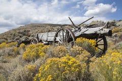 De Wilde Westennen, de verlaten landbouwbedrijven en de huizen royalty-vrije stock afbeeldingen