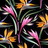De wildernis bloeit naadloos royalty-vrije illustratie
