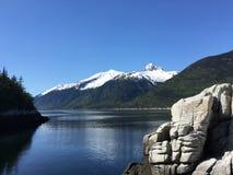 De Wildernis van Alaska met Snowcapped Bergen Stock Foto