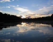 De Wildernis van Amazonië - Manu, Peru Stock Afbeeldingen