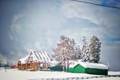 De Wildernis van Colorado door Verse Sneeuw wordt behandeld die royalty-vrije stock afbeeldingen