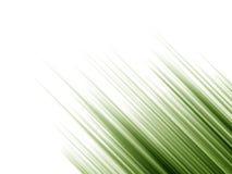De willekeurige Groene Spruiten van de Gradiënt Royalty-vrije Stock Fotografie