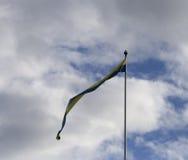 In de wind stock fotografie