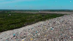 De wind verbetert in de lucht en de omcirkelende plastic zakken en ander puin op de stortplaats op een achtergrond van groene bos stock footage