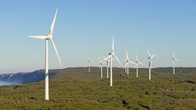 De Windlandbouwbedrijf van Albany Royalty-vrije Stock Foto