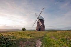 De windmolen van Halnaker. Stock Afbeeldingen