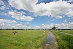 De Windmolens van Streefkerk royalty-vrije stock foto's
