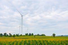 De windturbine maakte Duurzame energie op gebied, blauwe hemel en wolkenachtergrond in Chaiyaphum Thailand stock foto's