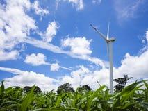 De windturbine op het graangebied, mooie hemelachtergrond Royalty-vrije Stock Afbeelding