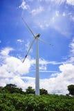 De windturbine op het maniokgebied, mooie hemelachtergrond Royalty-vrije Stock Foto