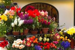 De winkel van de bloemist met de lentebloemen Stock Afbeeldingen