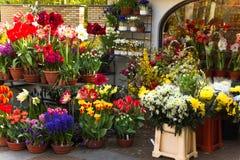 De winkel van de bloemist met kleurrijke de lentebloemen Stock Foto