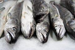 De winkel van vissen royalty-vrije stock afbeelding