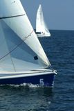 De winnaar en losed/Varende sport/regatta Stock Afbeelding