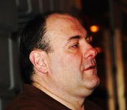 De winnende acteur James Gandolfini van de toekenning Royalty-vrije Stock Foto