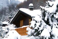 De winter royalty-vrije stock foto's