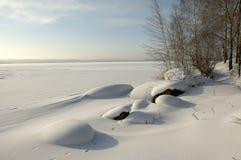 De winter. royalty-vrije stock foto