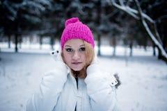 In de winter Royalty-vrije Stock Afbeeldingen