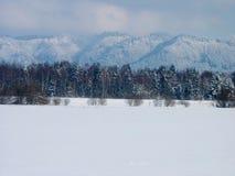 De winter Royalty-vrije Stock Foto
