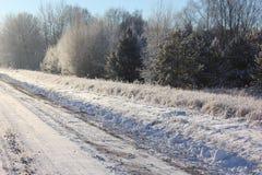 De winter, aard, sneeuw, vorst, aard Stock Afbeeldingen