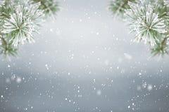 De winter achtergrondsneeuw Royalty-vrije Stock Foto