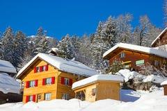 De winter in alpen Stock Foto's