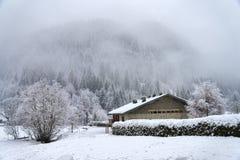 De winter alpien landschap met berijpt bomen en huis Stock Afbeelding