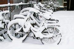 De winter in Amsterdam Royalty-vrije Stock Foto