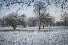 De winter in Belgrado Stock Afbeelding