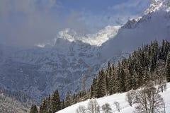 De winter in berg Royalty-vrije Stock Foto's