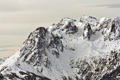 De winter in berg Royalty-vrije Stock Afbeeldingen
