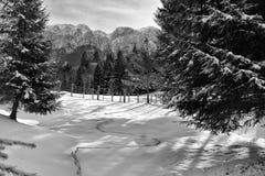 De winter in berg Stock Foto's
