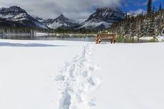 De winter in bergen Stock Afbeeldingen